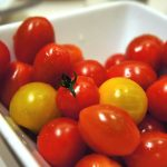 SanLucar Tomaten
