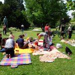 Foodblogger Picknick 29