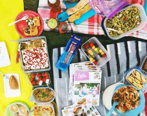 Sommer Picknick im Burrgarten